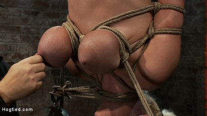 "Photo number 6 from 19yr old blond with huge ""F"" size breasts<br>is made to cum over & over.  Suffers horrific bondage! shot for Hogtied on Kink.com. Featuring Haley Cummings in hardcore BDSM & Fetish porn."