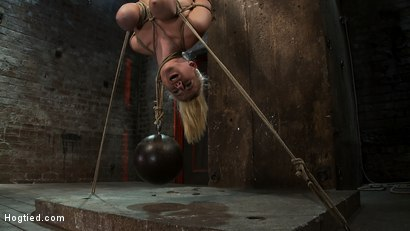 "Photo number 8 from 19yr old blond with huge ""F"" size breasts<br>is made to cum over & over.  Suffers horrific bondage! shot for Hogtied on Kink.com. Featuring Haley Cummings in hardcore BDSM & Fetish porn."