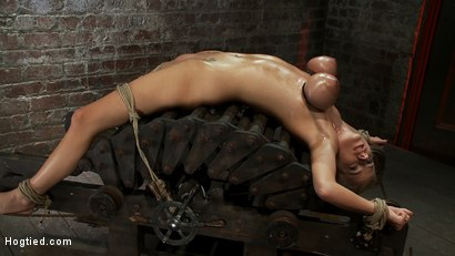 Photo number 5 from 19yr orgasmed past the breaking point.<br>Can someone be orgasmed to insanity? We almost found out! shot for Hogtied on Kink.com. Featuring Haley Cummings in hardcore BDSM & Fetish porn.