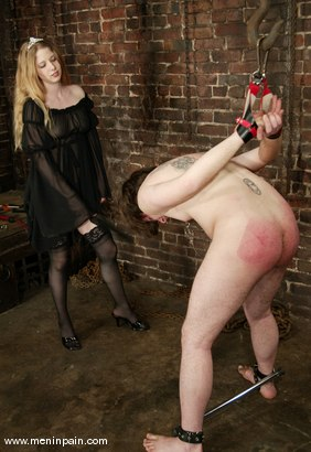 Photo number 7 from Princess Kali and Neil shot for Men In Pain on Kink.com. Featuring Princess Kali and Neil in hardcore BDSM & Fetish porn.