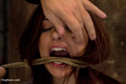 Photo number 4 from Bondage virgin experiences inescapable rope bondage<br> Unable to prevent us from making her cum! shot for Hogtied on Kink.com. Featuring Evilyn Fierce in hardcore BDSM & Fetish porn.