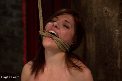 Photo number 9 from Bondage virgin experiences inescapable rope bondage<br> Unable to prevent us from making her cum! shot for Hogtied on Kink.com. Featuring Evilyn Fierce in hardcore BDSM & Fetish porn.