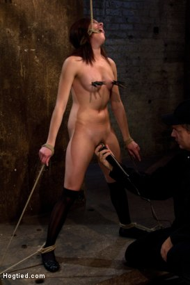 Photo number 11 from Bondage virgin experiences inescapable rope bondage<br> Unable to prevent us from making her cum! shot for Hogtied on Kink.com. Featuring Evilyn Fierce in hardcore BDSM & Fetish porn.
