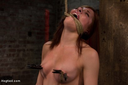 Photo number 14 from Bondage virgin experiences inescapable rope bondage<br> Unable to prevent us from making her cum! shot for Hogtied on Kink.com. Featuring Evilyn Fierce in hardcore BDSM & Fetish porn.