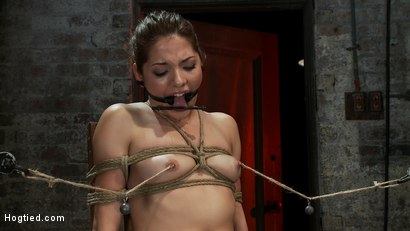 Photo number 11 from Cute girl next door is turned into a<br>helpless, drooling, mess of a slut, can't stop from cumming. shot for Hogtied on Kink.com. Featuring Evilyn Fierce in hardcore BDSM & Fetish porn.