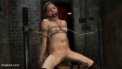 Photo number 13 from Cute girl next door is turned into a<br>helpless, drooling, mess of a slut, can't stop from cumming. shot for Hogtied on Kink.com. Featuring Evilyn Fierce in hardcore BDSM & Fetish porn.