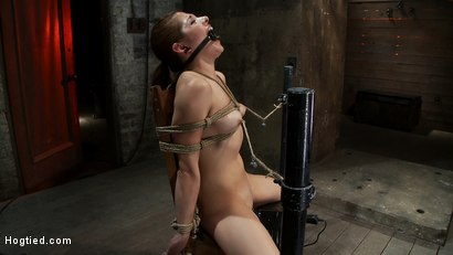 Photo number 14 from Cute girl next door is turned into a<br>helpless, drooling, mess of a slut, can't stop from cumming. shot for Hogtied on Kink.com. Featuring Evilyn Fierce in hardcore BDSM & Fetish porn.
