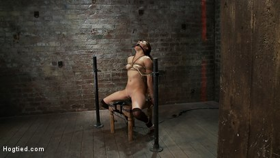 Photo number 15 from Cute girl next door is turned into a<br>helpless, drooling, mess of a slut, can't stop from cumming. shot for Hogtied on Kink.com. Featuring Evilyn Fierce in hardcore BDSM & Fetish porn.