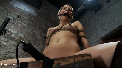 Photo number 3 from Cute girl next door is turned into a<br>helpless, drooling, mess of a slut, can't stop from cumming. shot for Hogtied on Kink.com. Featuring Evilyn Fierce in hardcore BDSM & Fetish porn.