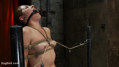 Photo number 9 from Cute girl next door is turned into a<br>helpless, drooling, mess of a slut, can't stop from cumming. shot for Hogtied on Kink.com. Featuring Evilyn Fierce in hardcore BDSM & Fetish porn.