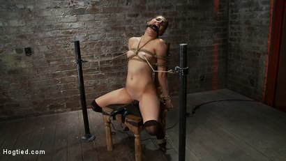 Photo number 10 from Cute girl next door is turned into a<br>helpless, drooling, mess of a slut, can't stop from cumming. shot for Hogtied on Kink.com. Featuring Evilyn Fierce in hardcore BDSM & Fetish porn.
