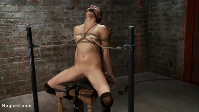 Photo number 12 from Cute girl next door is turned into a<br>helpless, drooling, mess of a slut, can't stop from cumming. shot for Hogtied on Kink.com. Featuring Evilyn Fierce in hardcore BDSM & Fetish porn.