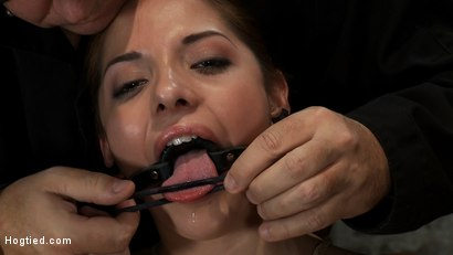 Photo number 7 from Cute girl next door is turned into a<br>helpless, drooling, mess of a slut, can't stop from cumming. shot for Hogtied on Kink.com. Featuring Evilyn Fierce in hardcore BDSM & Fetish porn.