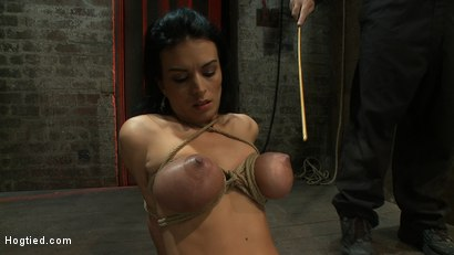 Photo number 3 from A pussy that swells up when you make it cum & cum & cum.<br>Suffering never looked so beautiful. shot for Hogtied on Kink.com. Featuring Bailey Brooks in hardcore BDSM & Fetish porn.