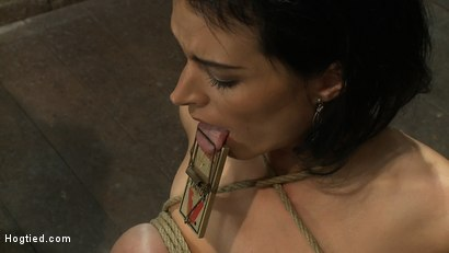 Photo number 5 from A pussy that swells up when you make it cum & cum & cum.   Suffering never looked so beautiful. shot for Hogtied on Kink.com. Featuring Bailey Brooks in hardcore BDSM & Fetish porn.
