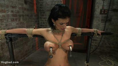 Photo number 4 from Sexy thin girl with huge boobs has massive orgasms<br>while neck rope slowly chokes her almost out. shot for Hogtied on Kink.com. Featuring Bailey Brooks in hardcore BDSM & Fetish porn.
