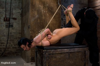 Photo number 10 from  Massive brutal orgasms mixed with foot torture, screaming & cumming, non-stop.<br>Pain & pleasure! shot for Hogtied on Kink.com. Featuring Bailey Brooks in hardcore BDSM & Fetish porn.
