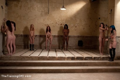 Photo number 15 from Day 1- Seven Slave Intake shot for The Training Of O on Kink.com. Featuring Iona Grace, Krysta Kaos, Missy Minks, Emma Haize, Coffee Brown, Minx Grrl and AnnaBelle Lee in hardcore BDSM & Fetish porn.