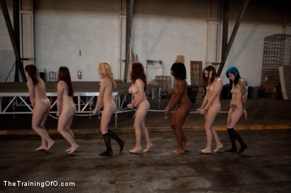 Photo number 4 from Day 1- Seven Slave Intake shot for The Training Of O on Kink.com. Featuring Iona Grace, Krysta Kaos, Missy Minks, Emma Haize, Coffee Brown, Minx Grrl and AnnaBelle Lee in hardcore BDSM & Fetish porn.