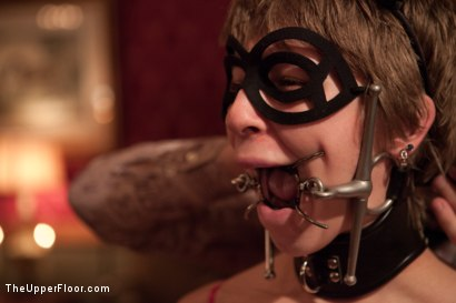 Photo number 23 from Three Kings shot for The Upper Floor on Kink.com. Featuring Kait Snow, Jessie Cox, Iona Grace and Krysta Kaos in hardcore BDSM & Fetish porn.
