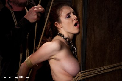 Photo number 15 from Day 4 - red and blue shot for The Training Of O on Kink.com. Featuring Iona Grace and Krysta Kaos in hardcore BDSM & Fetish porn.