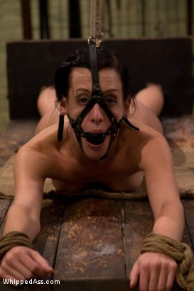 Photo number 1 from Break The Unbreakable shot for Whipped Ass on Kink.com. Featuring Elise Graves and Felony in hardcore BDSM & Fetish porn.