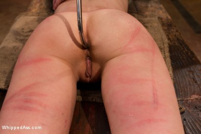 Photo number 4 from Break The Unbreakable shot for Whipped Ass on Kink.com. Featuring Elise Graves and Felony in hardcore BDSM & Fetish porn.