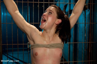 Photo number 14 from Electric Fence shot for Wired Pussy on Kink.com. Featuring Cheyenne Jewel and Isis Love in hardcore BDSM & Fetish porn.