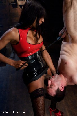 Photo number 1 from Sweet Dreams <br> Transexual Domination of a Single White Male shot for TS Seduction on Kink.com. Featuring Natassia Dreams and Jason Miller in hardcore BDSM & Fetish porn.