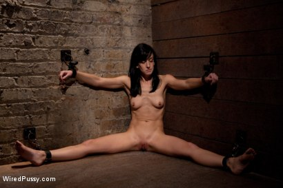 Photo number 9 from Tough as Nails shot for Wired Pussy on Kink.com. Featuring Elise Graves and Princess Donna Dolore in hardcore BDSM & Fetish porn.