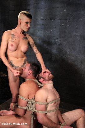 Photo number 13 from The Wrong Woman: TS Take Down shot for TS Seduction on Kink.com. Featuring Danni Daniels, Lance Navarro and Jesse Carl in hardcore BDSM & Fetish porn.