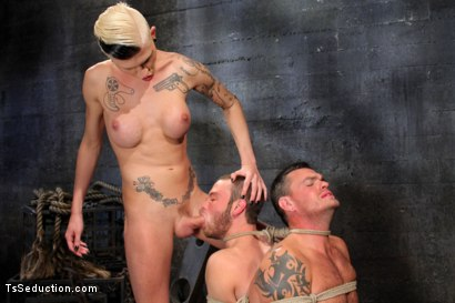 Photo number 11 from The Wrong Woman <br> Transexual Take Down shot for TS Seduction on Kink.com. Featuring Danni Daniels, Lance Navarro and Jesse Carl in hardcore BDSM & Fetish porn.
