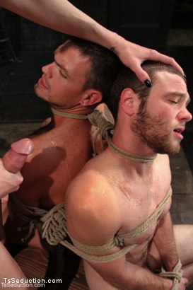 Photo number 14 from The Wrong Woman <br> Transexual Take Down shot for TS Seduction on Kink.com. Featuring Danni Daniels, Lance Navarro and Jesse Carl in hardcore BDSM & Fetish porn.