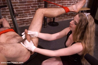 Photo number 8 from Princess Kali and Wild Bill shot for Men In Pain on Kink.com. Featuring Wild Bill and Princess Kali in hardcore BDSM & Fetish porn.