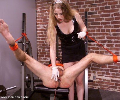Photo number 7 from Princess Kali and Wild Bill shot for Men In Pain on Kink.com. Featuring Wild Bill and Princess Kali in hardcore BDSM & Fetish porn.