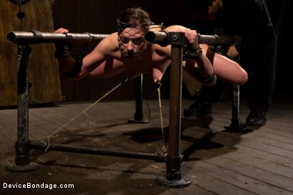 Photo number 8 from Breaking the Innocent shot for Device Bondage on Kink.com. Featuring Missy Minks in hardcore BDSM & Fetish porn.