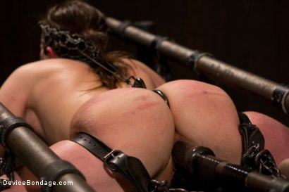 Photo number 3 from Breaking the Innocent shot for Device Bondage on Kink.com. Featuring Missy Minks in hardcore BDSM & Fetish porn.