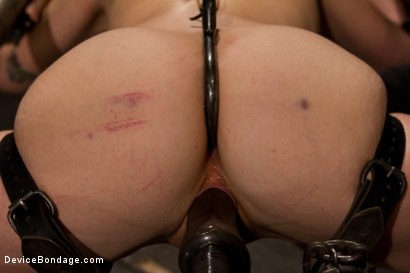 Photo number 7 from Breaking the Innocent shot for Device Bondage on Kink.com. Featuring Missy Minks in hardcore BDSM & Fetish porn.