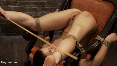 Photo number 2 from Pain slut, destroyed with pleasure.<br>Massive orgasm overload totally implodes this whore's brain.  shot for Hogtied on Kink.com. Featuring Cheyenne Jewel in hardcore BDSM & Fetish porn.