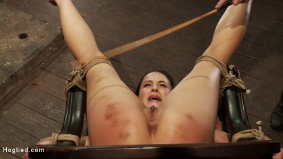 Photo number 3 from Pain slut, destroyed with pleasure.<br>Massive orgasm overload totally implodes this whore's brain.  shot for Hogtied on Kink.com. Featuring Cheyenne Jewel in hardcore BDSM & Fetish porn.
