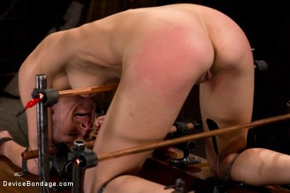 Photo number 4 from Hard Bondage Equals Hard Orgasms shot for Device Bondage on Kink.com. Featuring Elise Graves in hardcore BDSM & Fetish porn.