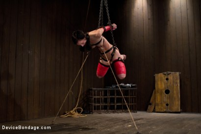 Photo number 6 from Hard Bondage Equals Hard Orgasms shot for Device Bondage on Kink.com. Featuring Elise Graves in hardcore BDSM & Fetish porn.