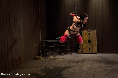 Photo number 9 from Hard Bondage Equals Hard Orgasms shot for Device Bondage on Kink.com. Featuring Elise Graves in hardcore BDSM & Fetish porn.