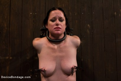 Photo number 11 from Your Suffering Is a Turn On. shot for Device Bondage on Kink.com. Featuring Scarlet Faux in hardcore BDSM & Fetish porn.