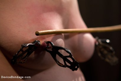 Photo number 12 from Your Suffering Is a Turn On. shot for Device Bondage on Kink.com. Featuring Scarlet Faux in hardcore BDSM & Fetish porn.
