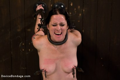 Photo number 15 from Your Suffering Is a Turn On. shot for Device Bondage on Kink.com. Featuring Scarlet Faux in hardcore BDSM & Fetish porn.