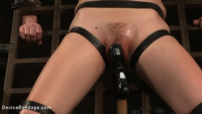 Photo number 1 from Super Slut 3: Revolving Intentions shot for Device Bondage on Kink.com. Featuring Lily LaBeau and James Deen in hardcore BDSM & Fetish porn.