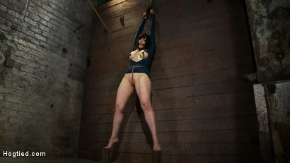 Photo number 6 from Big titted MILF, feels the evil bite of a crotch rope<br>Orgasms are ripped out of her helpless body shot for Hogtied on Kink.com. Featuring Annika in hardcore BDSM & Fetish porn.