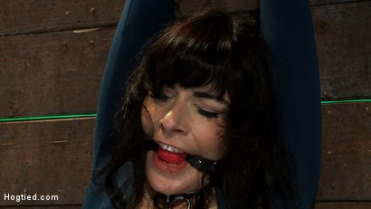 Photo number 11 from Big titted MILF, feels the evil bite of a crotch rope<br>Orgasms are ripped out of her helpless body shot for Hogtied on Kink.com. Featuring Annika in hardcore BDSM & Fetish porn.