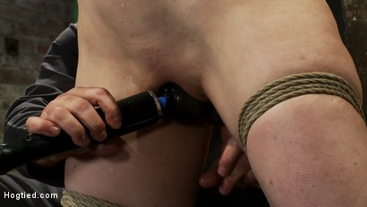 Photo number 11 from Actual member of the site applies to model & is accepted.<br>This big titted MILF is bound & abused. shot for Hogtied on Kink.com. Featuring Annika in hardcore BDSM & Fetish porn.